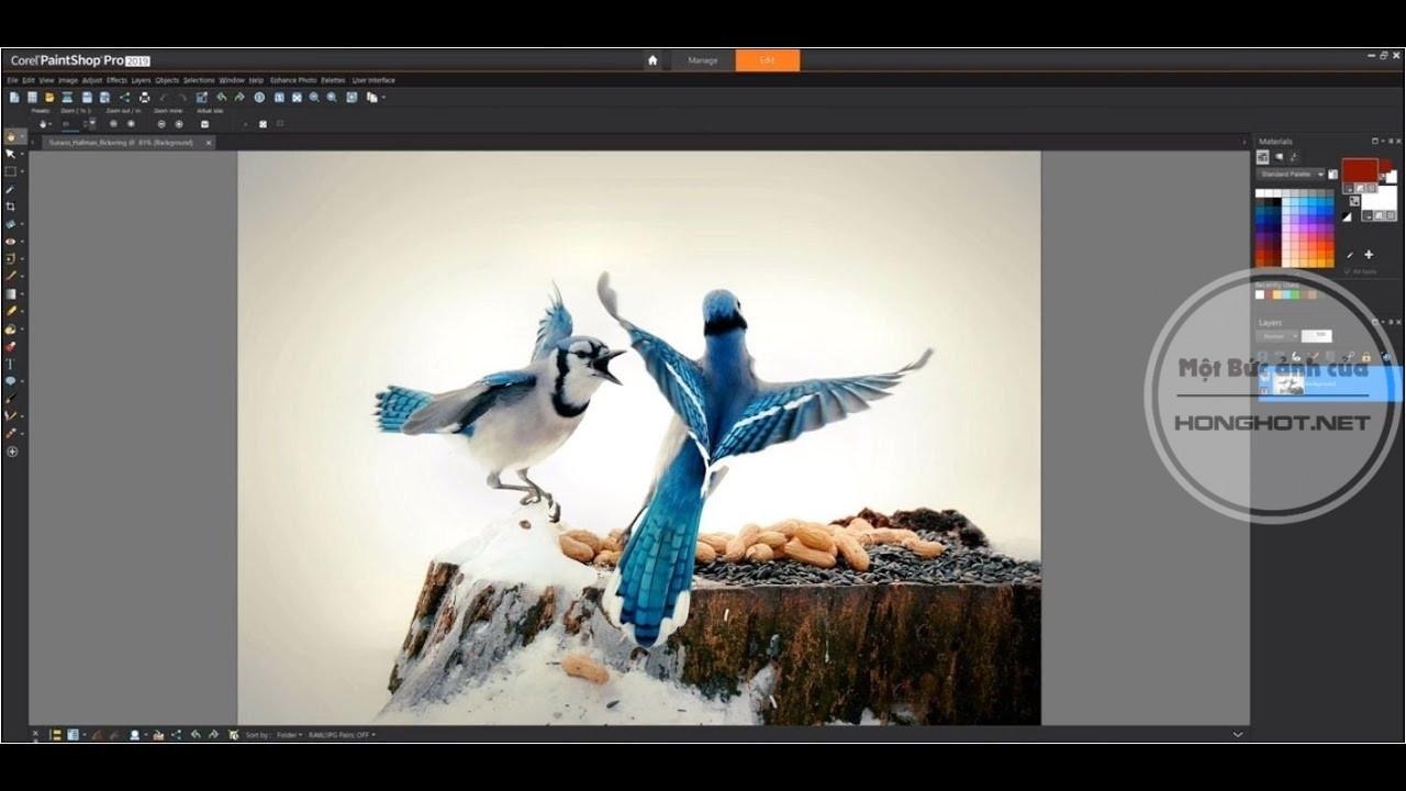 Phần mềm Corel PaintShop Pro